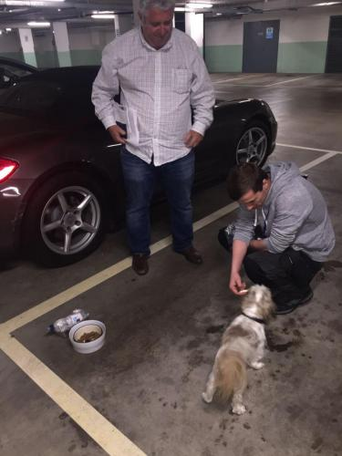 Feeding The Customers Dog After Being Locked In The Car For Hours